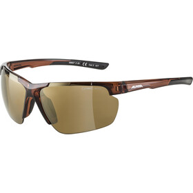 Alpina Defey HR Glasses brown transparent matt/gold mirror